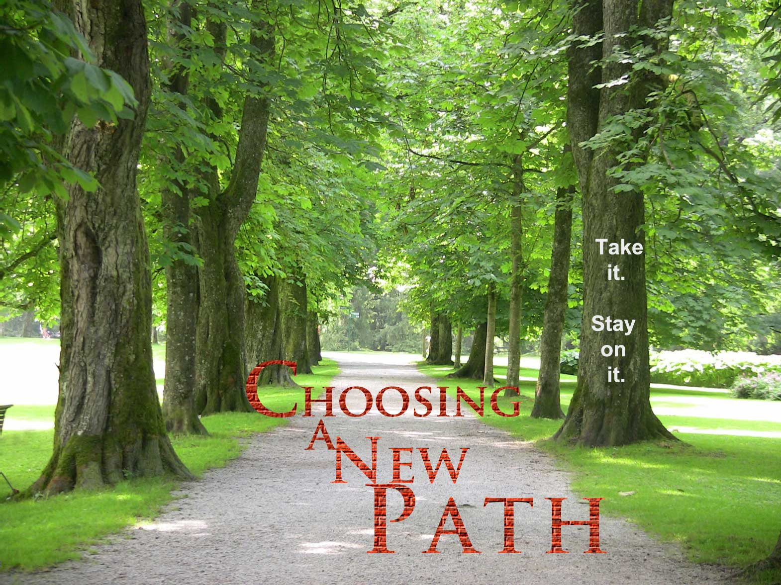 Choosing-a-New-Path